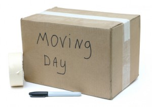 tampa_mediation_relocation